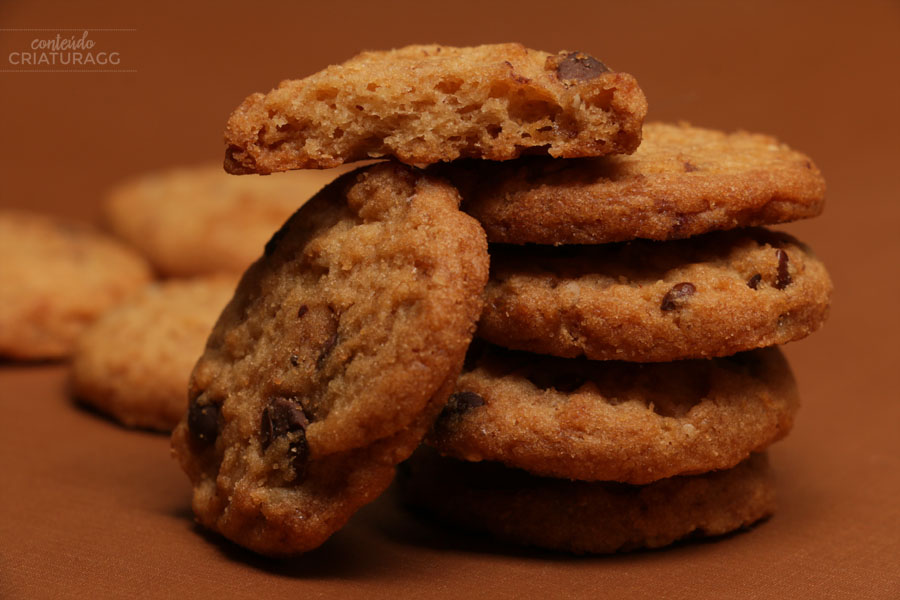 cookie-diet-gran-pure-chocolate-zero-diet-dieta-lanchinho-doce-criatura-gg-katia-ricomini